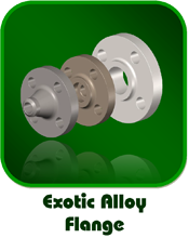 Exotic Alloy Flange